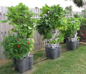 Example of a vertical vegetable garden